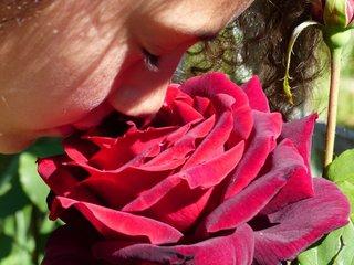 Sentir une rose parfumée