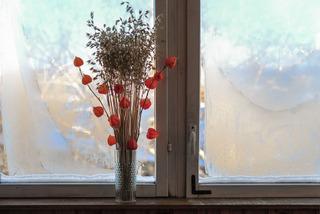 Bouquet sec : graminée et physalis