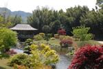 Visitez la Bambouseraie et son Jardin d'Eden éphémère : dépaysement garanti !