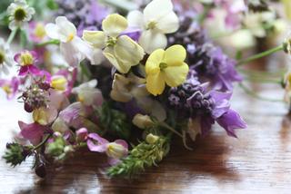 Fleurs coupées pour bouquet