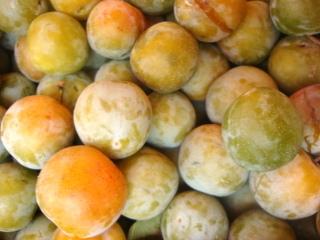 Prune Reine-Claude dorée