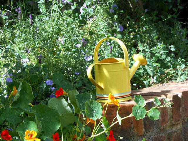Arrosoir coloré (Un peu de fantaisie au jardin)