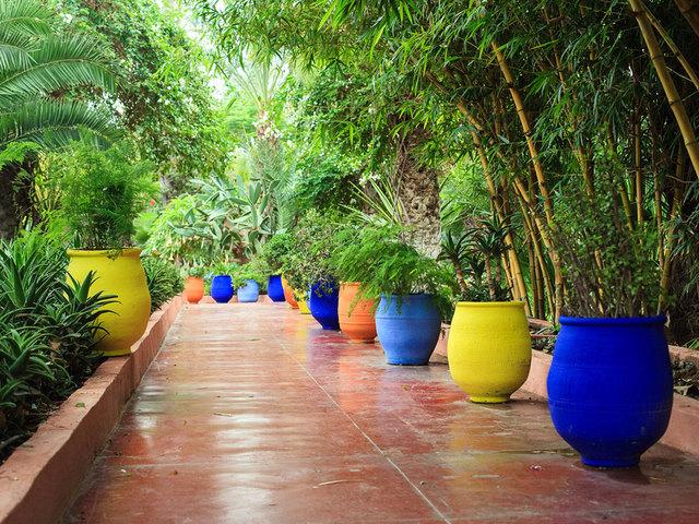Pots couleur tout for Au jardin d enfants