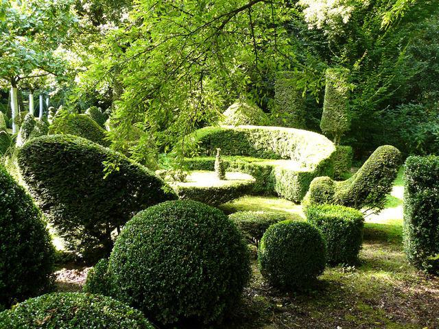 Jardins pas de calais tout - Jardin topiaire ...