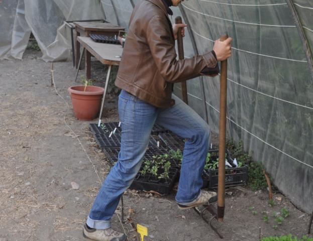 Travail du sol : les bons outils