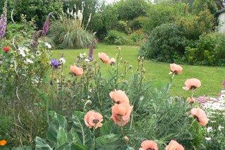 Jardin de Catherine, à Pordic (22)