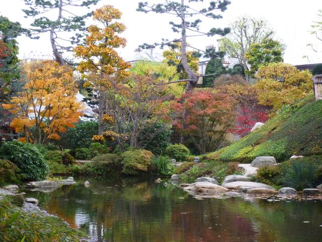 Jardin japonais bonsai accueil design et mobilier for Massif jardin japonais