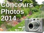 Concours photos : la fin du mois approche !