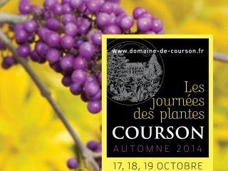 Courson - automne 2014 / D.R.