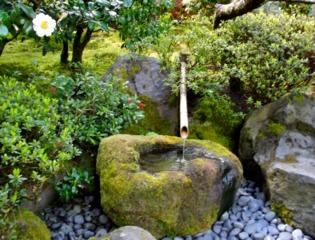 Jardin japonais : pierre à eau