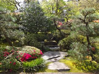Jardin japonais : pins et azalées taillés
