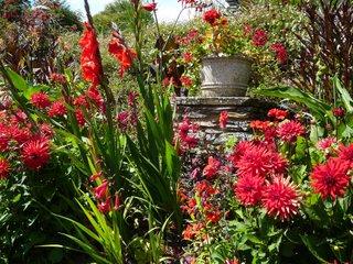 Savoir composer un beau jardin - fiches pratiques
