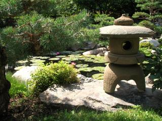 lanterne toro et bassin jardin japonais