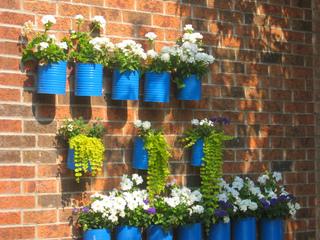 Boîtes de conserves recyclées en pots de fleurs