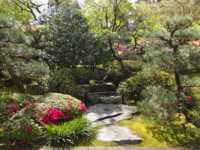 Conseils pour cr er un petit jardin japonais - Plantes pour jardin japonais ...