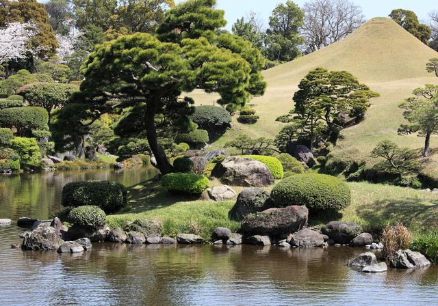 jardin japonais d couverte caract ristiques et v g taux. Black Bedroom Furniture Sets. Home Design Ideas