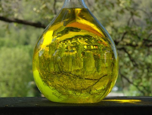 Plantes à parfums : les végétaux utilisés en parfumerie
