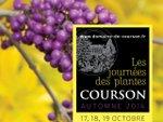 Journées des Plantes d'Automne de Courson, 17,18 et 19 octobre 2014