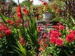Un jardin rouge toute l'année