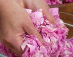 Gourmandises avec des pétales de rose
