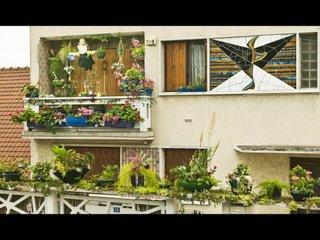 Jardin d'Evoli à Cachan (94)