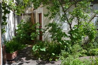 Petit jardin de copropriété - Gare à l'ombrage !