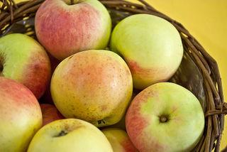 Pomme Transparente de Croncels