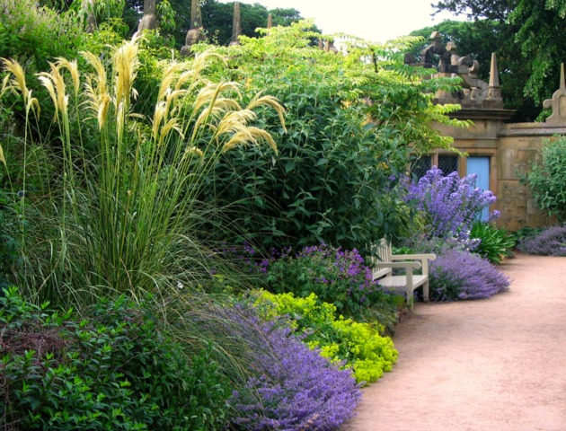 Les gramin es for Jardin anglais mixed border