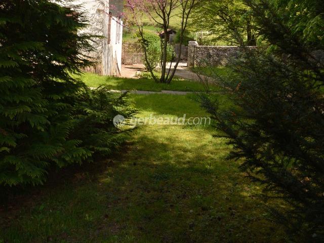 Plantes pour massif à l\'ombre : vivaces, arbustes