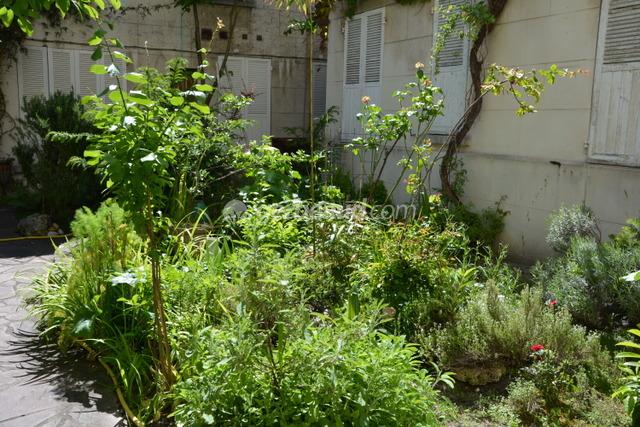Petit jardin d 39 int rieur moderne ouvert et ferm en 49 for Jardin interieur maison
