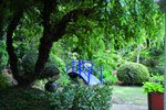 Prix Bonpland 2015 : les jardins lauréats