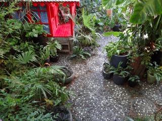 Calades au Jardin de Bésignoles