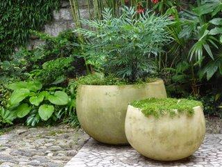 Jardin de Bésignoles : potée