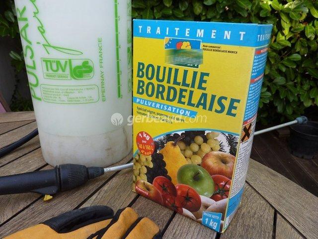 Bouillie bordelaise traitement pour le jardin tol r en bio - Dosage sulfate de cuivre piscine ...