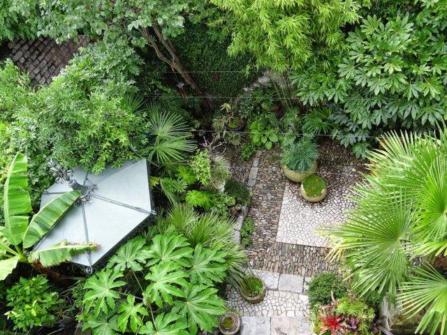Bésignoles : un beau jardin dans 300 m²