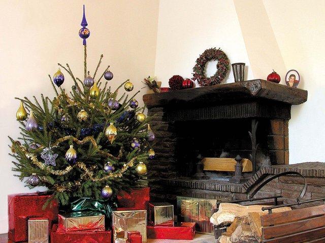 Sapin de Noël : variétés et présentations