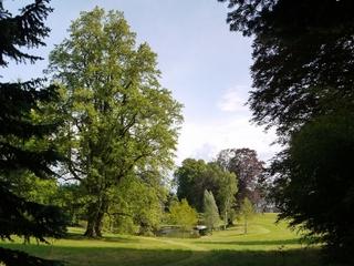vue pittoresque de l'arboretum du château de Neuvic d'Ussel