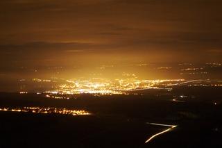 Pollution lumineuse : les impacts sur la biodiversité animale