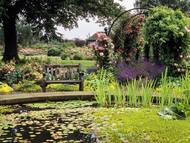 Jardin Romantique Tout
