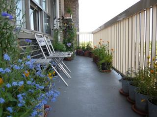 Fleurir un balcon à l'ombre : conseils et sélection de plantes