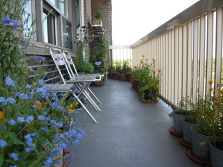 jardiniers impatiens tout. Black Bedroom Furniture Sets. Home Design Ideas
