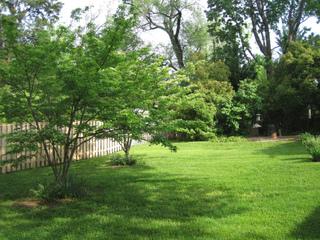 Clôture de jardin : palissade de bois