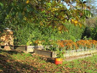 Concours photos 2014 : jardin d'Yveline
