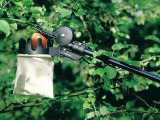 Choisir les outils pour le verger tailler traiter pulv riser planter - Cueille fruit telescopique ...
