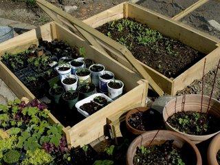 Les Legumes A Semer Pour L Automne Et L Hiver