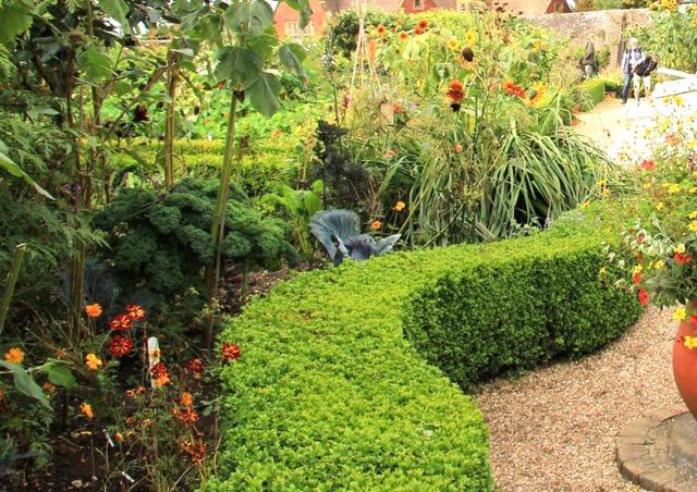 Haie pour petit ou grand jardin for Plantes pour bordures de jardin