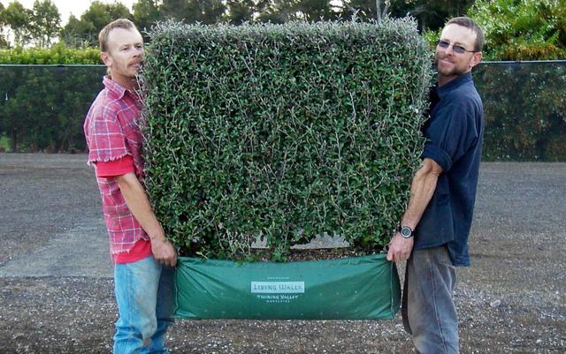 Clôturer son jardin : les différents types de clôtures