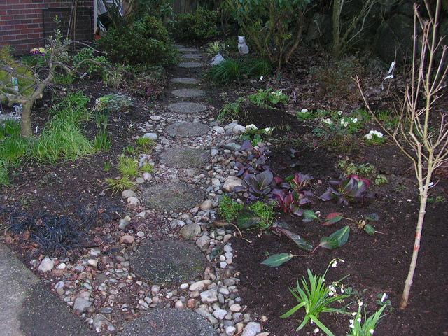Le jardinage en hiver travaux au jardin et pr paratifs for Jardin anglais en hiver