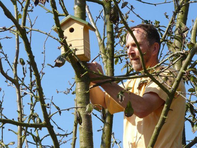 Nichoirs pour les oiseaux du jardin for Les oiseaux du jardin