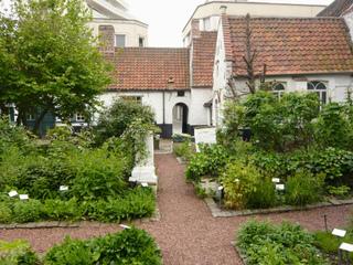 Jardin de plantes médicinales et ornementales